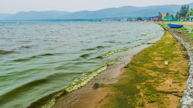 Минприроды Бурятии: на Байкале улучшилась ситуация со спирогирой